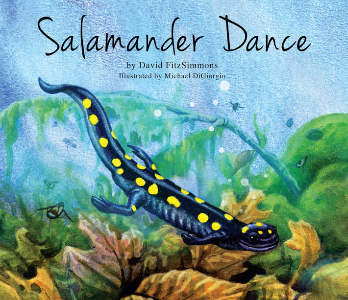 1 Salamander_Dance_Cover_hr