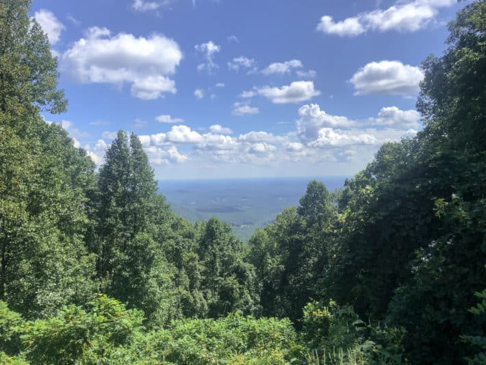 a lookout from the appalachian trail with a forest in the foreground and blue sky in the background