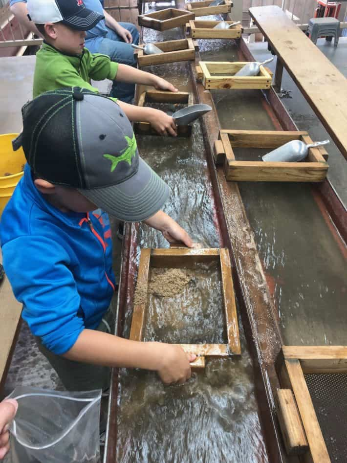 the boys mining for gems at the consolidated gold mine in Georgia